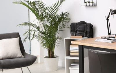 Lighting Design for Your Home Office